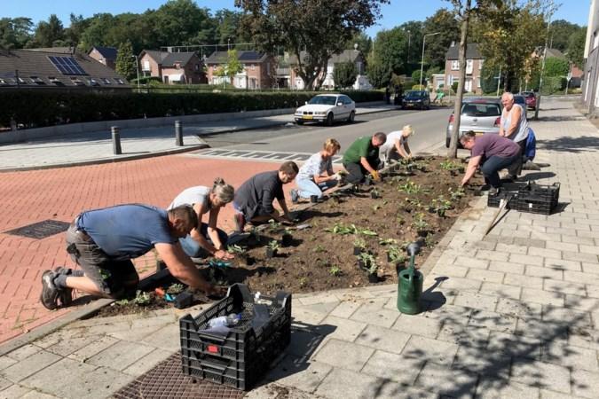 Landgraafs project Ikgroenhet dingt mee naar landelijke prijzen